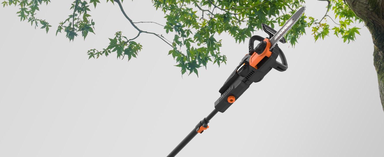 pole saw, cordless pole saw, battery powered pole saw, 10 inch pole saw, tree pruner