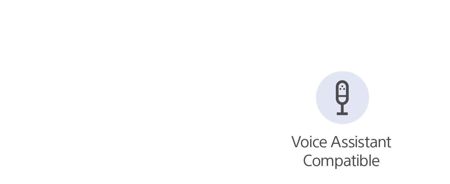 Voice assistant compatible