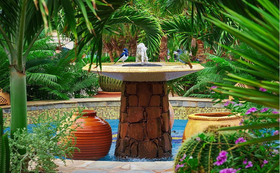 OMORC Bomba Fuente Solar, Bomba de Agua Solar, Fuente Solar Jardín con Boquilla 4 en 1 y 2 Esponjas de Filtro, 4 Modos de Rociado de Agua para Baño de Pájaros, Decoración