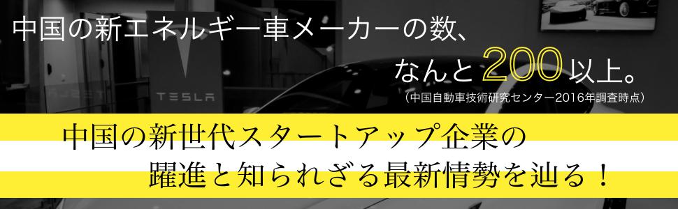 インセイン モード イーロン マスク イーロンマスク イーロンマスク CASE ケース 自動車 車 自動運転 AI  GPU CPU ビジネス ビジネス書 ビジネス本