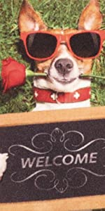 hond, grappig, grappig, voetmat, cadeau, housewarmingscadeau, voetmat, binnenshuis.