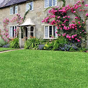 Miracle-Gro Lawn Thickener Grass Seed & Feed can be used from March to September