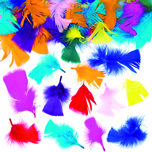 Collage Feathers