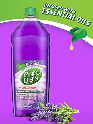 disinfectant, liquid, germ kill, bacteria, floor, multipurpose, cleaning, pine o cleen, all surface