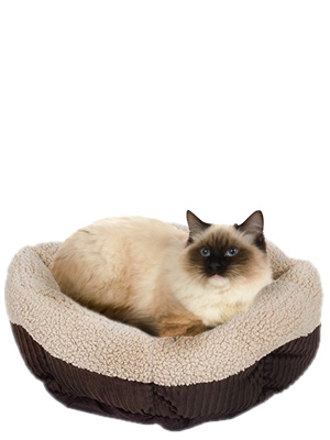 kitten bed, round dog bed, cat beds for large cats, kirkland dog bed, small cat bed, pet beds