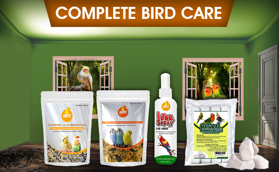 bird food for all