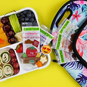 Stretch Island Fruit Co - Fruit Leather Variety Pack them in backpacks & anywhere you & yours go