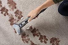 Best Carpet Steam Cleaner Reviews 2019 Top Rankings