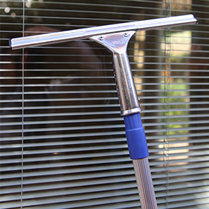 Squeegee with Pole