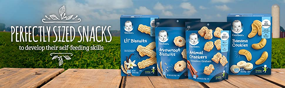 Biscuits and Cookies perfectly sized to develop self-feeding skills for little ones.