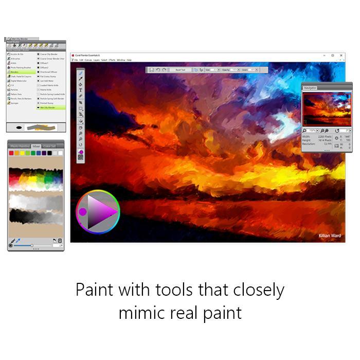 Corel Painter Essentials 6 Digital Art Suite: Amazon.com.mx: Software