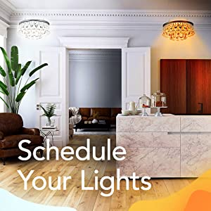 Schedule Your Lights
