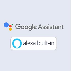 Alexa and Google Assistant