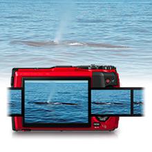 Unter Wasser fotografieren
