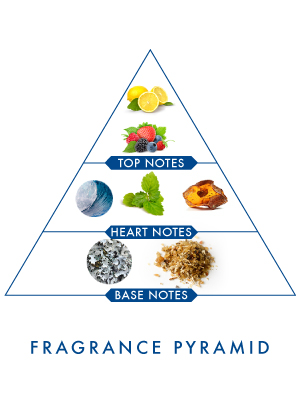 Wild Stone Code Titanium Body Perfume