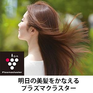 プラズマクラスタードライヤー IB-JP9 美髪 うるおい