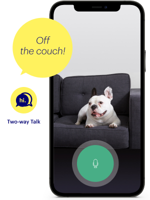 two-way-talk, speaker, microphone, app, canary pro