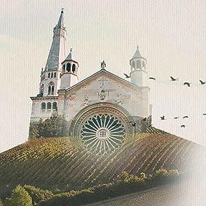 Modena Aceto Balsamico