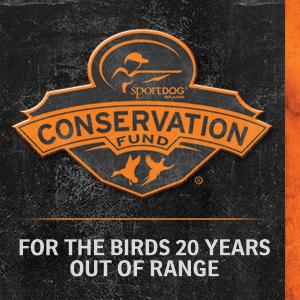 hunting conservation birds ducks fowl