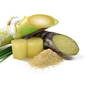 Sugar Cane, Glycolic AHA, Alpha Hydrox, Alpha Hydroxy Acid, Glycolic Alpha Hydroxy Acid, Natural