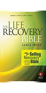 life recovery depression opioids drugs alcohol help guidance wisdom notes 12 steps large print