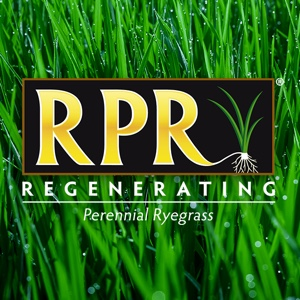 generate; grow; plant; plants; fertilizer; turf; builder; blue; golfing; yearly; annual; roots