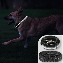 shock collar for large dogs