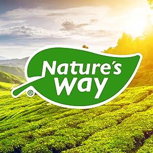 NTW_Brand Image_Logo_300_AAPICN