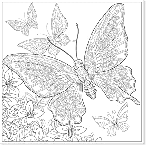 Mandala Zum Ausmalen Schmetterling Frisch Mandalas Zum Ausmalen