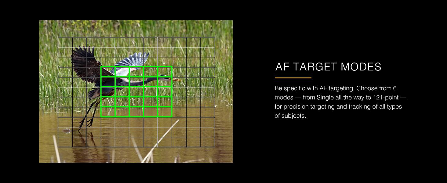 AF Target Modes