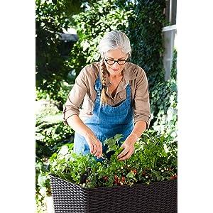 Keter Hochbeet Easy Growing Braun 120l Amazon De Garten