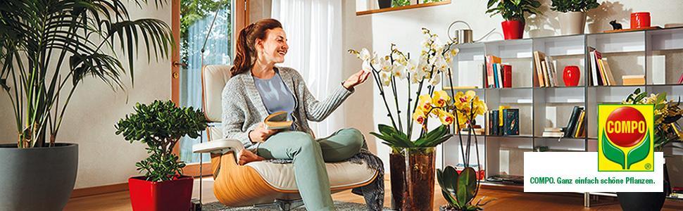 compo orchideen spray bek mpfung von sch dlingen an. Black Bedroom Furniture Sets. Home Design Ideas