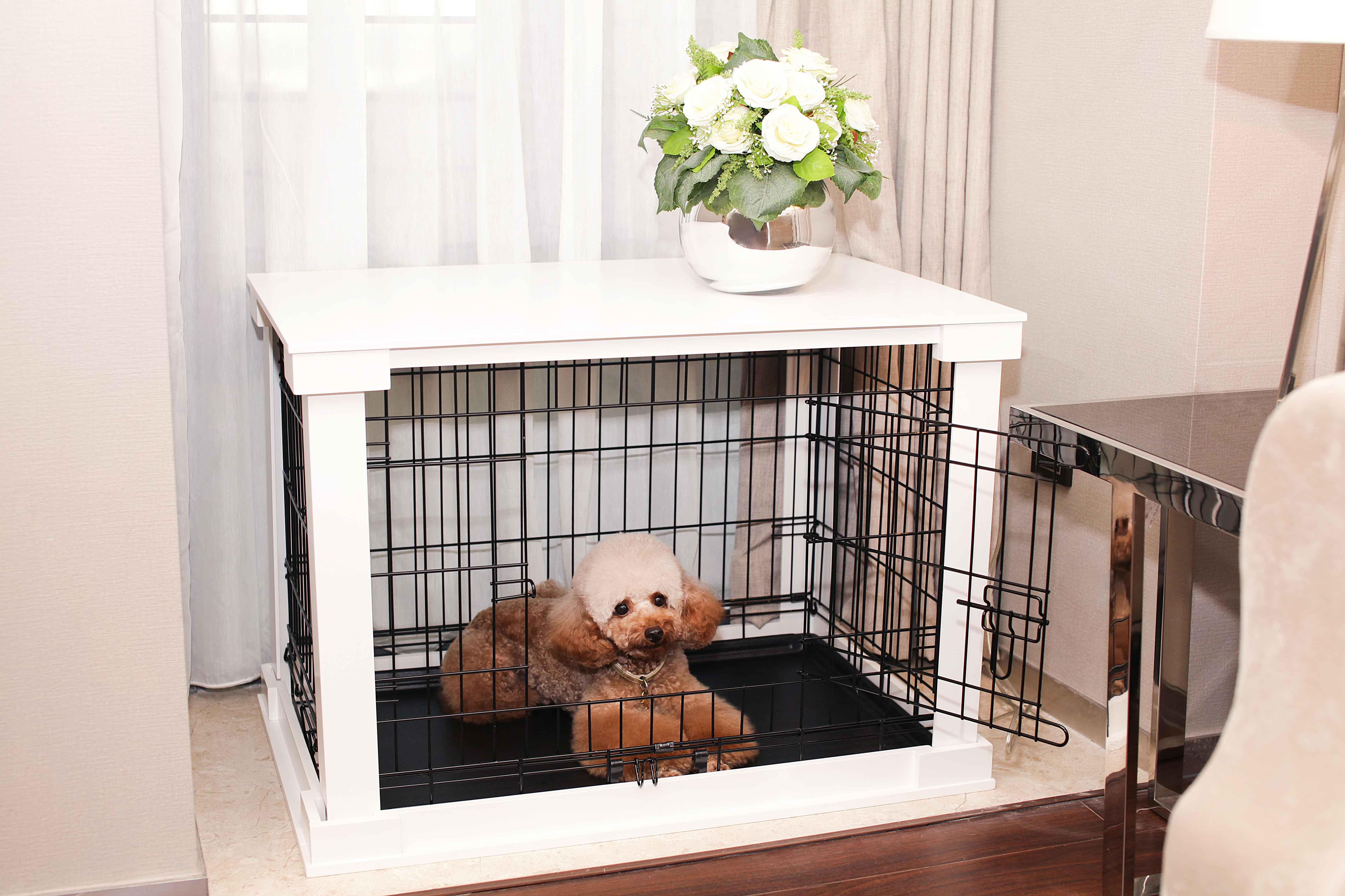 Puppy Crate In Bedroom Or Living Room