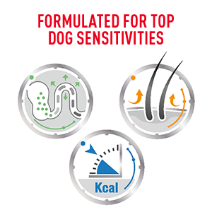 Royal Canin dog formula is formulated for top dog sensitivities