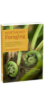 Northeast Medicinal Foraging Guides