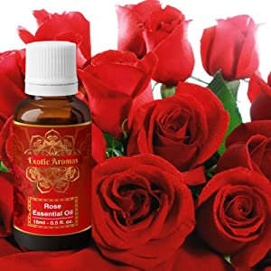 lavender essential oil rose oil aroma oil aromatherapy for skin for hair for body diffuser