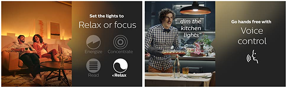 relax focus set the lights voice control