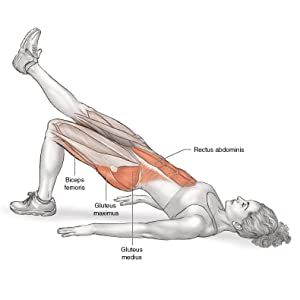 running anatomy, bridge with leg kick, lower back, glutes, hamstrings