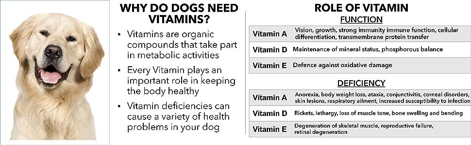 Absolute Vitamin,Drools Absolute Vitamin Tablets,Drools,Vitamin