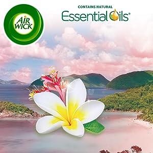 Amazon.com: Air Wick Scented Oil 3 Refills, Virgin Islands ...