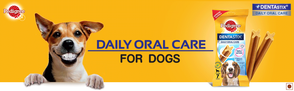 Daily oral care for dogs