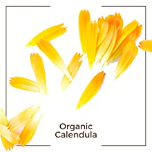 calendula organic ingredient