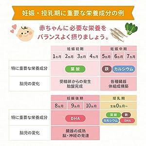 妊娠期 栄養素