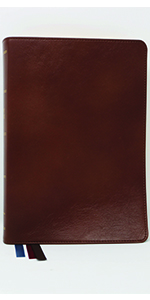 kjv nkjv new king James version bible leather brown reference preaching