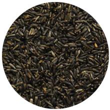 Nyjer seed finch bird feeder