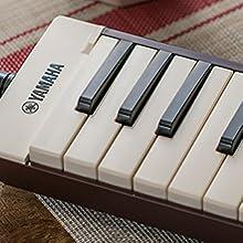 pianica keys closeup