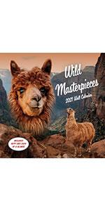 wild masterpieces