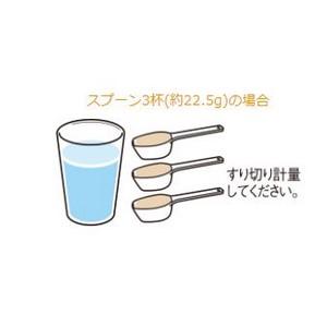 ディアナチュラアクティブ ソイプロテイン ソイミルク味 360g
