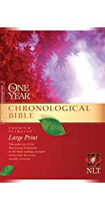 chronological in order events daily reading bible study devotional quiet time easy read arge print