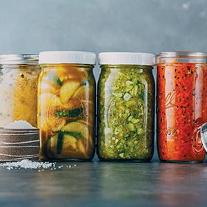 probiotic foods;kombucha;fermentation cookbook;live culture;gut bacteria;preserving;home cook;mead